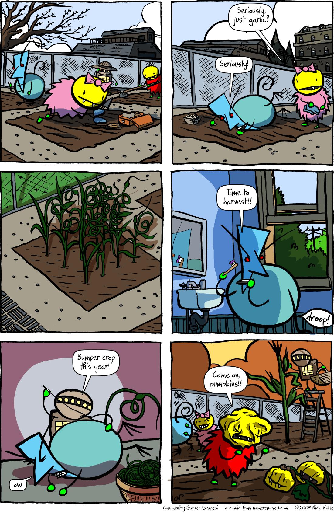 Community Garden (scapes)